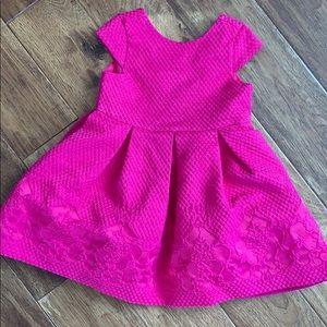 Janie and Jack 18-24 hot pink jacquard dress